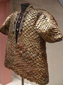 Coat of Pangolin scales.JPG
