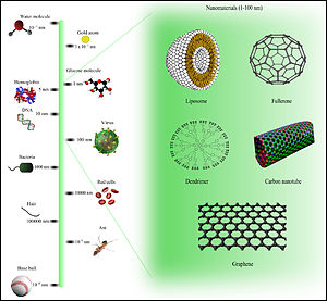 Nanotechnology - Comparison of Nanomaterials Sizes