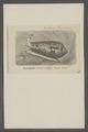 Conus textilis - - Print - Iconographia Zoologica - Special Collections University of Amsterdam - UBAINV0274 085 10 0110.tif