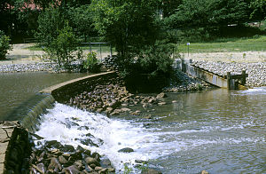 Cooper River (New Jersey) - Evans Lake Impoundment with Fish Ladder, Haddonfield