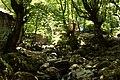 Creek (28244169227).jpg