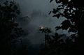 Creepy landscape (8023951031).jpg