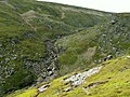 Crowden Great Brook - geograph.org.uk - 426146.jpg