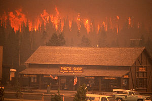 1988 in the United States - June – November: Yellowstone fires of 1988