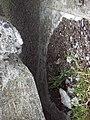 Cruz de Agozarreta 05.jpg