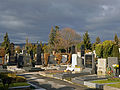 Döblinger Friedhof, Winterstimmung.jpg