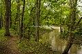 DRAKE CREEK, HENDERSONVILLE, TN - panoramio.jpg