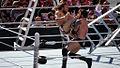 Daniel Bryan knee WM31.jpg