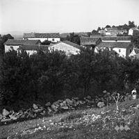 Del vasi Račice 1955.jpg