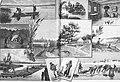 Die Gartenlaube (1892) b 496.jpg