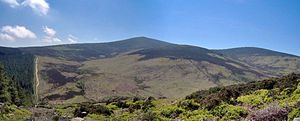 Djouce - Northern slope of Djouce