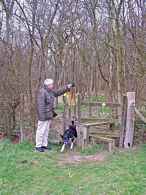 Pet door - A man lets a dog through the lift-up hatch at a stile in Medway, England