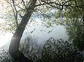 Dojran Lake 152.jpg