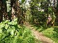 Dolores,Quezonjf9780 08.JPG