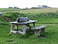 Dolphin at the picnic table, Morfa Nefyn cliff top - geograph.org.uk - 1602010.jpg