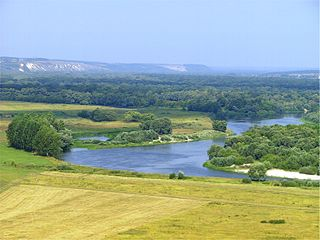 Foto vom Don in der Oblast Woronesch