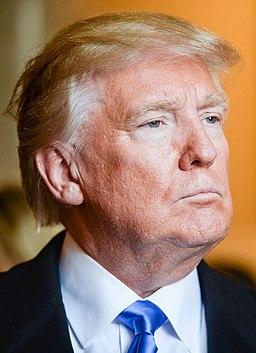 Donald Trump January 2017