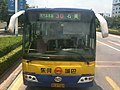 Dongguan City Bus IMG 0350.jpg