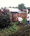 Dr LAMIREE MARTIN Sandrine and her team to clean up hospital's yards at CSB 2 Tanambao Verrerie Toamasina Madagascar (p2).jpg