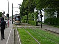 Drogenbos tram 2016 2.jpg