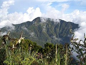 Mount Dulang-dulang - Mount Dulang-dulang viewed from the peak of Mount Kitanglad
