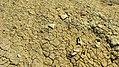 Durovdagh Necropolis8 by UZEYIR MIKAYIL.jpg