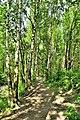 Ecological trail.jpg