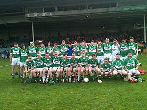 Effin - County and Munster Intermediate Champions 2011