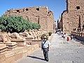 Egypt-3A-036 - Karnak Temple (2217351494).jpg
