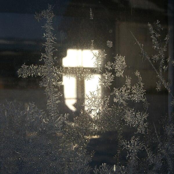600px-Eisblumen_am_Fenster_2.JPG