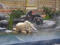 Elephants in Anotata pond around the royal crematorium of Bhumibol Adulyadej (01).jpg