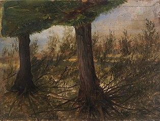 Trees beside a Stream