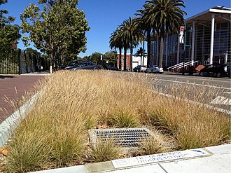 Green infrastructure - This Stormwater Curb Extension in Emeryville, California provides a pedestrian safety element as well as stormwater quality benefits. It uses Bay-Friendly Landscaping and recycled water for irrigation.