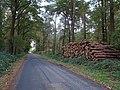 Emmerich Elsepaßweg PM19-03.jpg