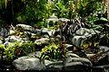 Enchanted garden (3533872529).jpg