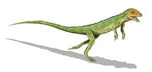 Eudibamus - Life restoration of Eudibamus