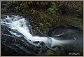 Eugene-Springfield, OR, OR, USA - panoramio (3).jpg