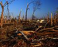 FEMA - 20666 - Photograph by Win Henderson taken on 12-07-2005 in Kentucky.jpg