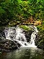 Falls in Lamington National Park.jpg