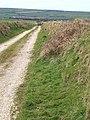 Farm track near Starapark - geograph.org.uk - 735459.jpg
