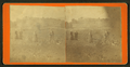 Farmers in gardens, from Robert N. Dennis collection of stereoscopic views.png