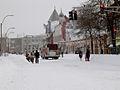 Feb 2013 blizzard 5876.JPG