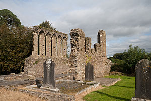Ferns Cathedral - Surviving ruin of the medieval chancel