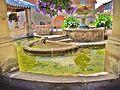 Ferrières-les-Scey. Fontaine-lavoir saint Martin. (4). 201(-06-26.JPG