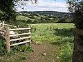 Field near Long Park - geograph.org.uk - 1467681.jpg