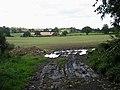 Field near Low Barns - geograph.org.uk - 959924.jpg