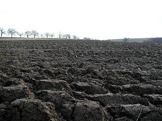 Rozorané pole