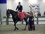 Fieracavalli 2014 - Salernitano3.jpg