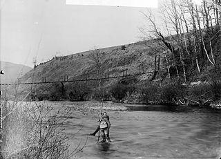 Fishing on Afon Teifi, Llandysul (Cer)