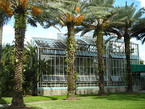 Florida International University - The Wertheim Conservatory houses many rare species of plants and foliage.